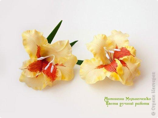 И снова здравствуйте. На этот раз хочу показать сборку цветочков-украшений с гладиолусами. Начну, пожалуй, с мутанта болотного )) фото 9