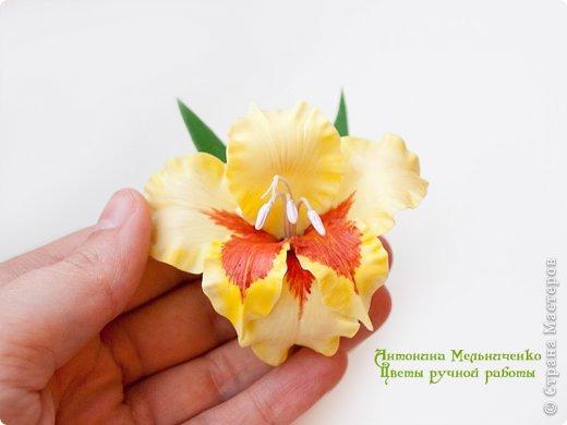 И снова здравствуйте. На этот раз хочу показать сборку цветочков-украшений с гладиолусами. Начну, пожалуй, с мутанта болотного )) фото 10