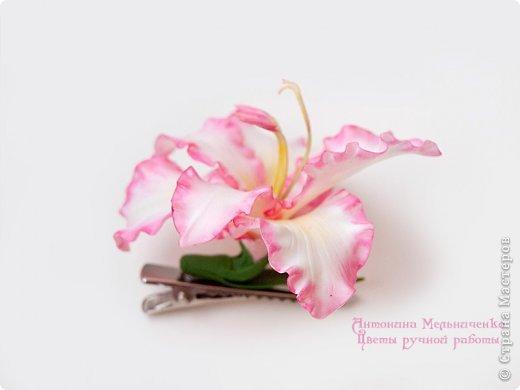 И снова здравствуйте. На этот раз хочу показать сборку цветочков-украшений с гладиолусами. Начну, пожалуй, с мутанта болотного )) фото 5