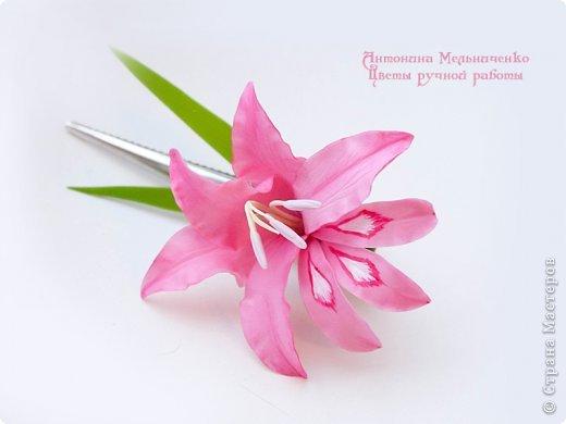 И снова здравствуйте. На этот раз хочу показать сборку цветочков-украшений с гладиолусами. Начну, пожалуй, с мутанта болотного )) фото 1