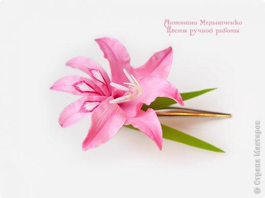 И снова здравствуйте. На этот раз хочу показать сборку цветочков-украшений с гладиолусами. Начну, пожалуй, с мутанта болотного )) фото 4