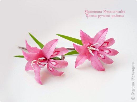 И снова здравствуйте. На этот раз хочу показать сборку цветочков-украшений с гладиолусами. Начну, пожалуй, с мутанта болотного )) фото 2
