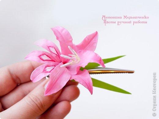 И снова здравствуйте. На этот раз хочу показать сборку цветочков-украшений с гладиолусами. Начну, пожалуй, с мутанта болотного )) фото 3