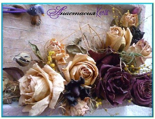 Гербарий из сухих роз