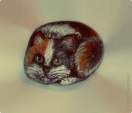 Каменный кот фото 1