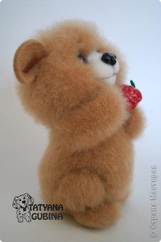 Малышонок Егорка. Ласковый, милый и добрый медвежонок. Любит подкрепиться малинкой :) Высота 19 см. Егорка- 100 % шерсть. Носик, глазки, малинка из пластики. Малинка расписана вручную. фото 5