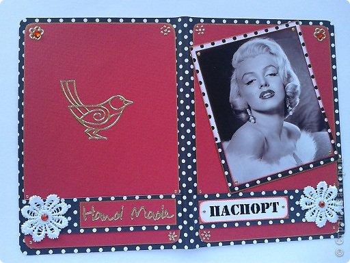 Вот моя первая обложка на паспорт фото 17