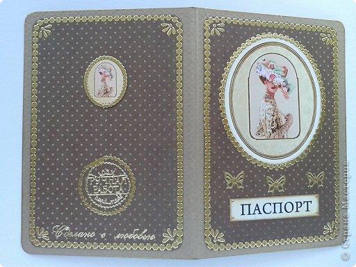 Вот моя первая обложка на паспорт фото 20