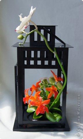 Но ярко-красный огненный цветок  Ты сорвать однажды захотела.  И опять, как белый мотылёк,  На его сиянье полетела.  Только сложится нелегко  Дружба пламени с мотыльком...  Композиция с орхидеями. Цветы выполнены из специальной полимерной глины для лепки цветов (modern clay, modena clay, Flower Clay ), по составу близкой к холодному фарфору. Уникальные свойства глины позволяют проработать самые тонкие детали. Лепестки и листья готового цветка, после полного высыхания, остаются немного гибкими. фото 3