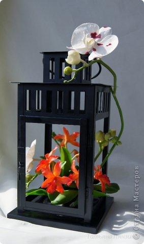 Но ярко-красный огненный цветок  Ты сорвать однажды захотела.  И опять, как белый мотылёк,  На его сиянье полетела.  Только сложится нелегко  Дружба пламени с мотыльком...  Композиция с орхидеями. Цветы выполнены из специальной полимерной глины для лепки цветов (modern clay, modena clay, Flower Clay ), по составу близкой к холодному фарфору. Уникальные свойства глины позволяют проработать самые тонкие детали. Лепестки и листья готового цветка, после полного высыхания, остаются немного гибкими. фото 1