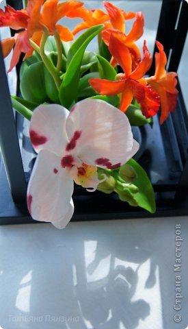 Но ярко-красный огненный цветок  Ты сорвать однажды захотела.  И опять, как белый мотылёк,  На его сиянье полетела.  Только сложится нелегко  Дружба пламени с мотыльком...  Композиция с орхидеями. Цветы выполнены из специальной полимерной глины для лепки цветов (modern clay, modena clay, Flower Clay ), по составу близкой к холодному фарфору. Уникальные свойства глины позволяют проработать самые тонкие детали. Лепестки и листья готового цветка, после полного высыхания, остаются немного гибкими. фото 12