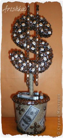 Кофейные деревья фото 11