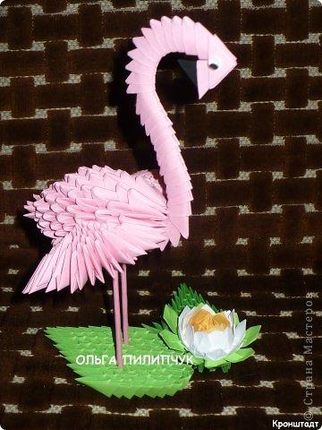Поделка изделие 1 апреля Оригами китайское модульное Розовый фламинго Бумага.