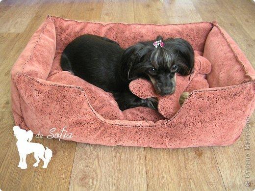 Представляю Вам мастер - класс по шитью лежака для собаки. Это очень просто и интересно. фото 44