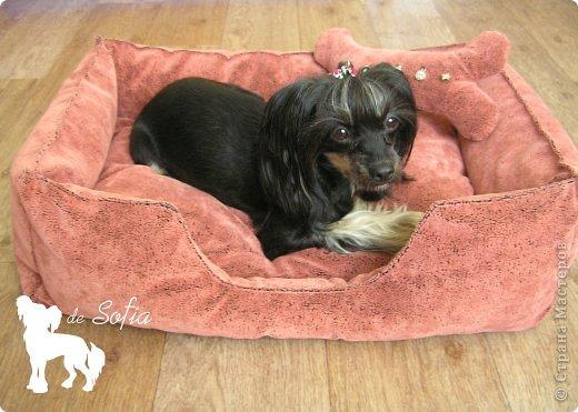 Интерьер Мастер-класс Шитьё Мастер-класс Лежак для собаки Ткань фото 48
