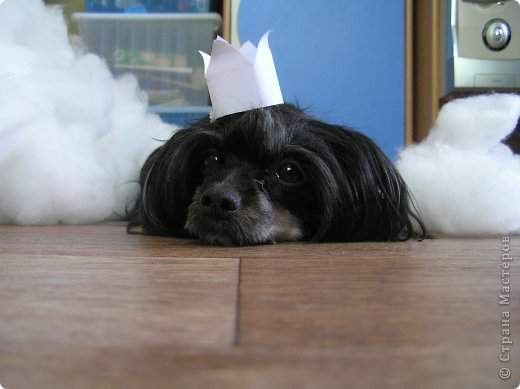 Представляю Вам мастер - класс по шитью лежака для собаки. Это очень просто и интересно. фото 21