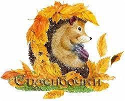 """Осень - это удивительный момент, когда уже пора... Пора собирать урожай, пора убирать летние вещи, пора считать цыплят и пора грустить... Только мне погрустить вместе с природой ну никак не получается))))) Эта осень выдалась очень """"урожайной"""" на подарки и радость, так что пусть грусть подождёт!!! Только за последние две недели я получила пять посылочек, не считая трёх, о которых я уже рассказывала))))) В общем, терпеть больше нет мочи, спешу поделиться с Вами своей осенней радостью!!! фото 1"""