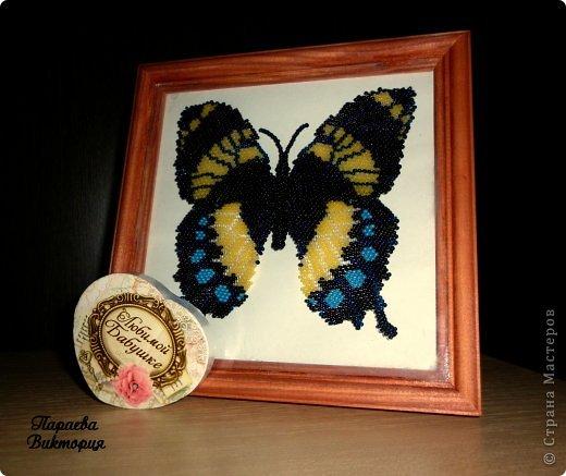 Эту бабочку я сделала специально в подарок любимой мамочке и бабушке моего сынули к Новому Году. Бабочка выполнена в технике кирпичного плетения, по схеме мастера бисероплетения Цветик7цветик