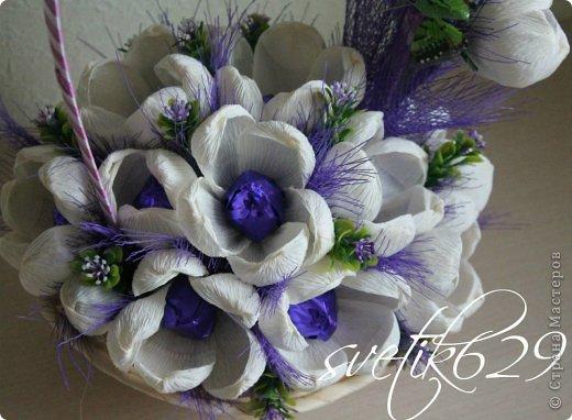 Цветы любят в любое время года ,а зимой особенно. фото 2