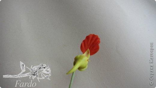 Мастер-класс Поделка изделие Лепка Настурция МК Фарфор холодный фото 24