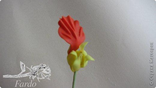 Мастер-класс Поделка изделие Лепка Настурция МК Фарфор холодный фото 25