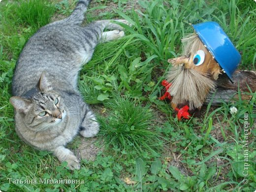 В доме у нас всегда были кошки, без этих усатиков чего-то не хватает. К сожалению, в частном доме много опасностей, уберечь от которых практически невозможно. В частном доме я живу уже 8 лет.  фото 2