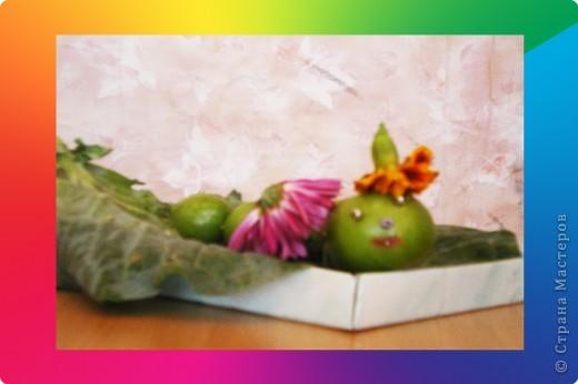 Гусиничка «Молли» фото 2