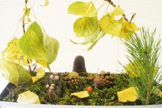 Осенним днём фото 1