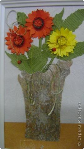 Солнечные цветы. фото 1