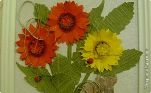 Солнечные цветы. фото 2