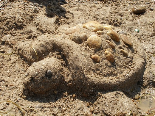 Я на солнышке лежу... фото 1