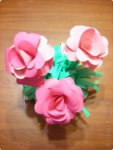 Розы. фото 3