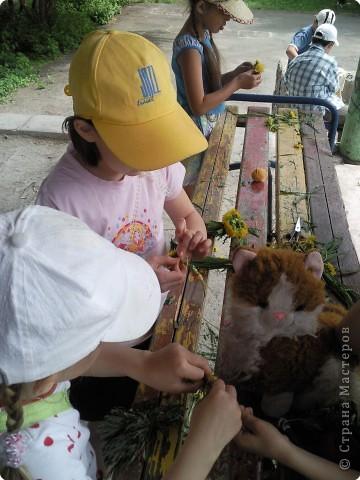 У куколки Полинки -  волосики - травинки фото 4