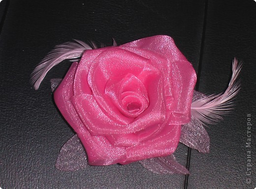 Ах эти розы фото 1