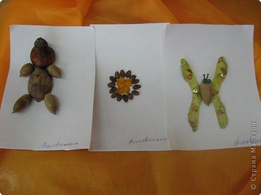 Лесные подарки фото 1