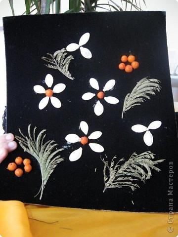 Цветики степные фото 1