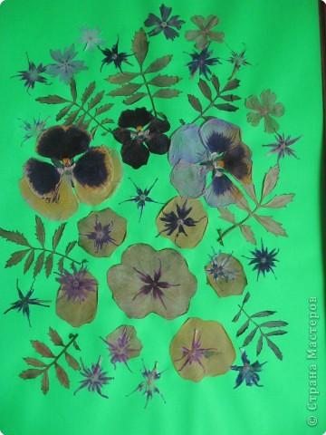 Цветочный узор фото 1