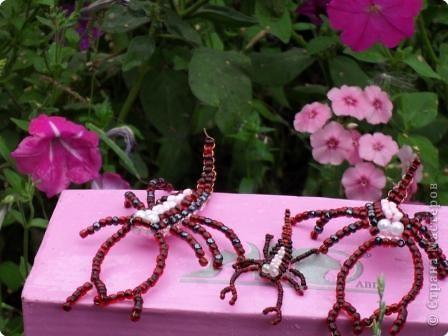 Жили-были бабушка Роза и дедушка Василек... Любили они разводить цветы в своем саду. фото 3