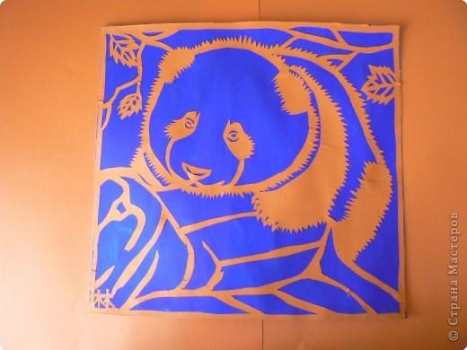 Бамбуковый медведь.
