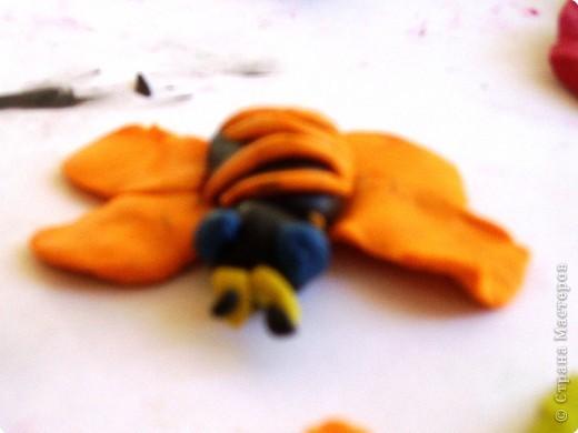 пчёлка... фото 1