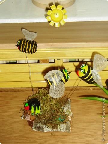 Пчелиный переполох