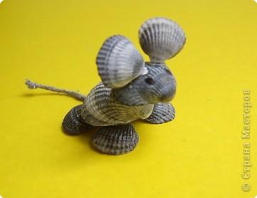 Это зверушки из ракушек фото 7