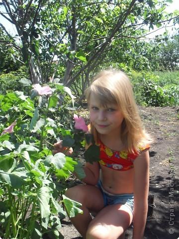 Цветочная полянка на память о лете фото 2
