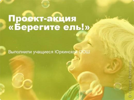 """Презентация проекта-акции """"Берегите ель!"""" фото 1"""