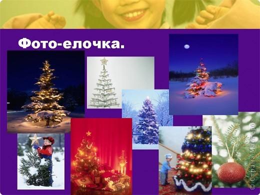 """Презентация проекта-акции """"Берегите ель!"""" фото 10"""