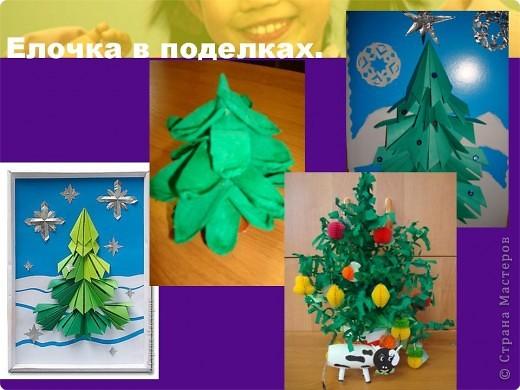 """Презентация проекта-акции """"Берегите ель!"""" фото 11"""