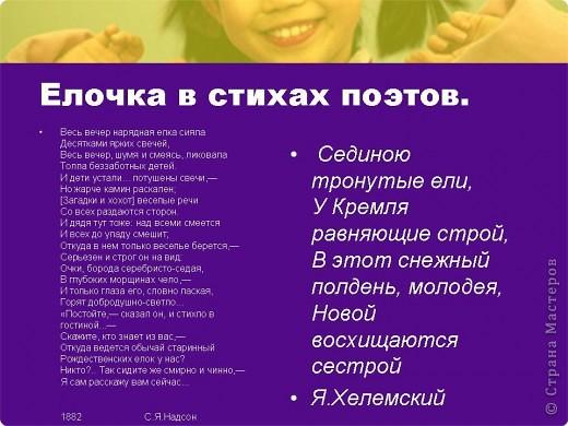 """Презентация проекта-акции """"Берегите ель!"""" фото 5"""