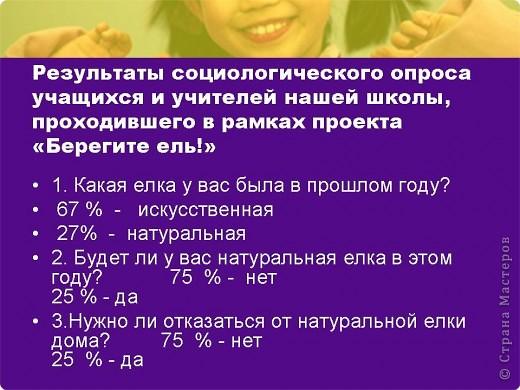 """Презентация проекта-акции """"Берегите ель!"""" фото 9"""