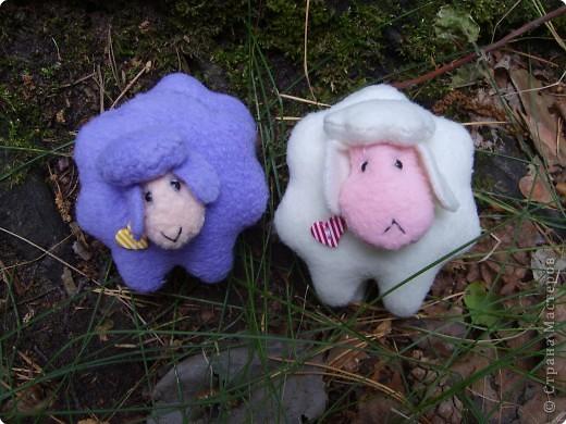 Две овечки
