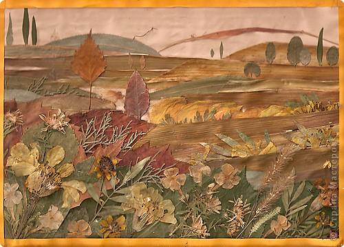«Золотая осень вполе»